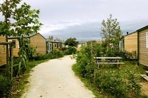 Camping Camp Du Soleil 3 étoiles à Ars-En-Ré