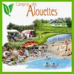Camping Des Alouettes 3 étoiles à Cognac-La-Foret