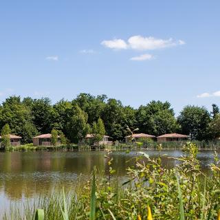 Camping Domaine Les Bois Du Bardelet 5 étoiles à Poilly Lez Gien