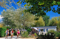 Camping Le Bois D'Amour 3 étoiles à Quiberon