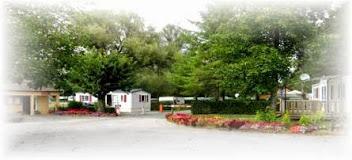 Camping Les Aulnes 3 étoiles à Bezinghem