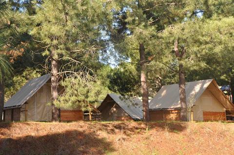 Camping Marina D'Aleria 4 étoiles à Aléria