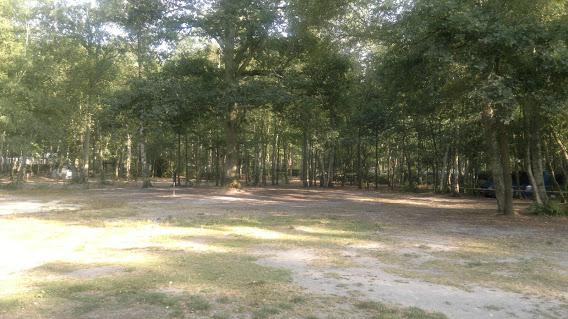 Camping La Musardiere 3 étoiles à Milly-La-Forêt